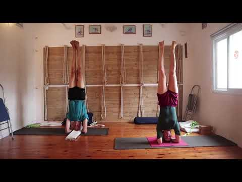 Yoga training to strengthen the immune system